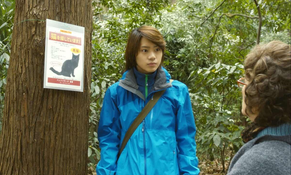 คุณป้า ตามหาแมวจิบิ ภาพตัวอย่างจากภาพยนตร์เรื่อง Only The Cat knows เจ้าเหมียวจิบิ หายไปไหนนะ?