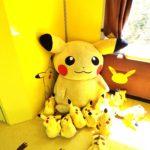 Pokemon – Plushies 1 (Carissa)