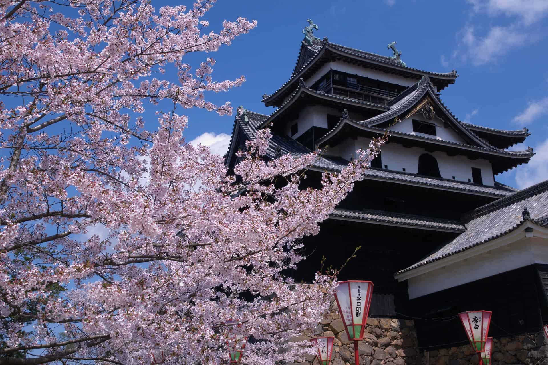 เที่ยวญี่ปุ่น คนน้อย unseen ปราสาทมัตสึเอะ (Matsue Castle : 松江城)