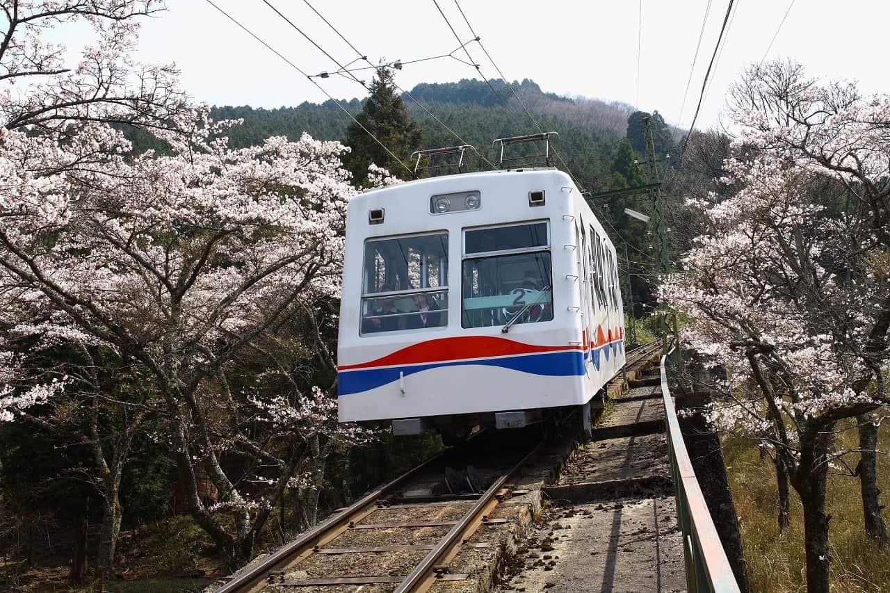 ที่สถานีปลายทาง Yase-Hieizanguchi Station ก็มีจุดให้ขึ้นเคเบิ้ลคาร์ (Cable Car) เพื่อชมวิวของภูเขาฮิเอ