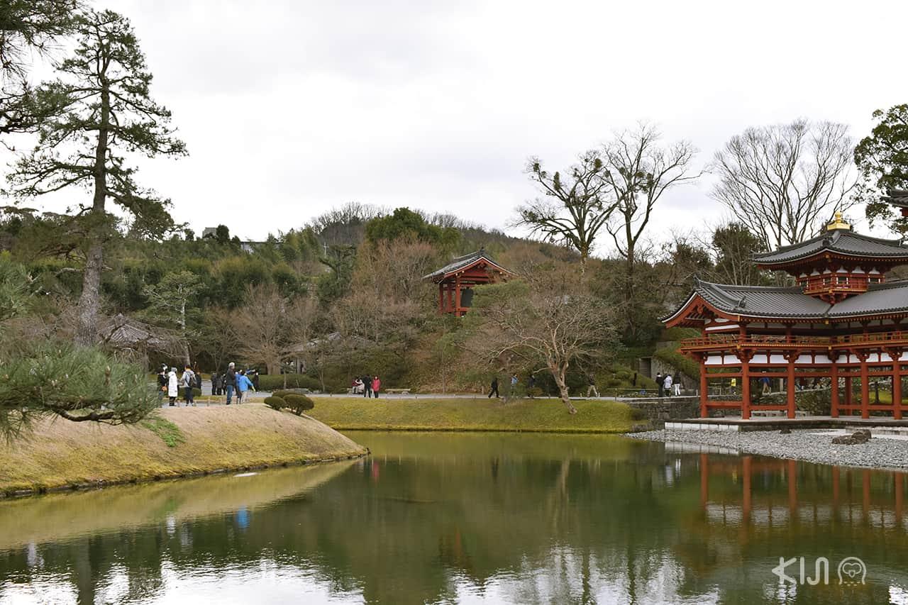 พื้นที่บริเวณรอบวัดเบียวโดอิน (Byodoin Temple) จังหวัดเกียวโต