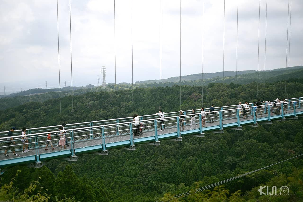 Hakone Free Pass - Mishima Skywalk