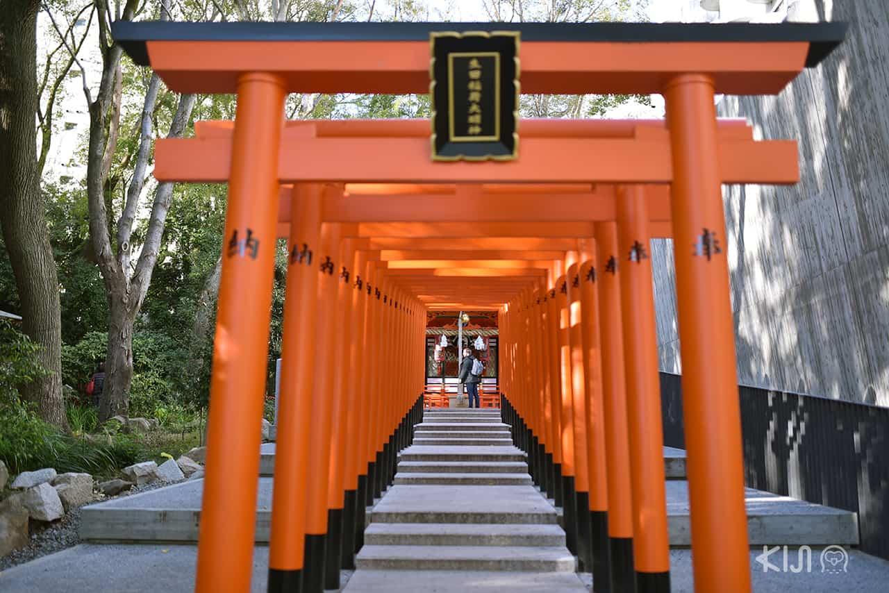 ศาลเจ้าอิคุตะ (Ikuta Shrine) โกเบ (Kobe) จังหวัดเฮียวโงะ (Hyogo)