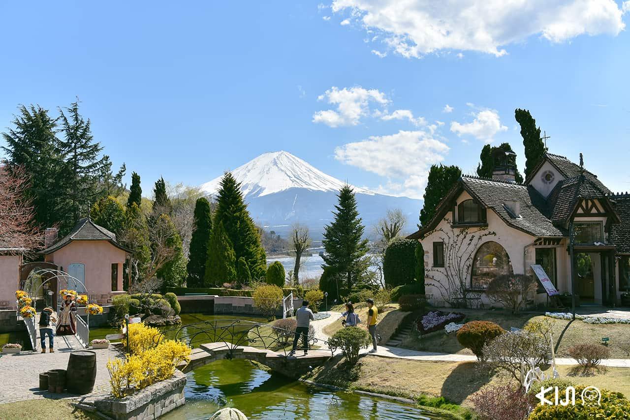 วิวภูเขาไฟฟูจิจาก Kawaguchiko Music Forest Museum