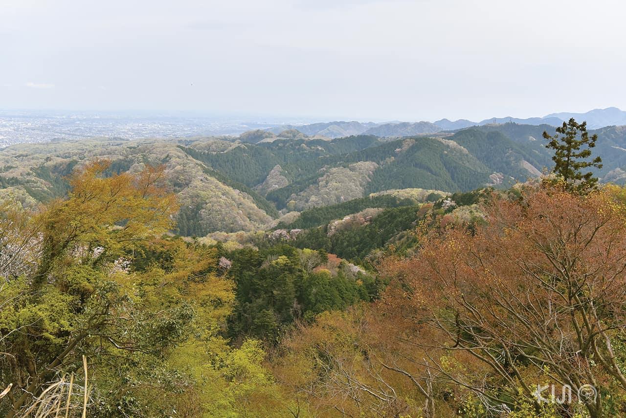 Mt. Takao Tokyo