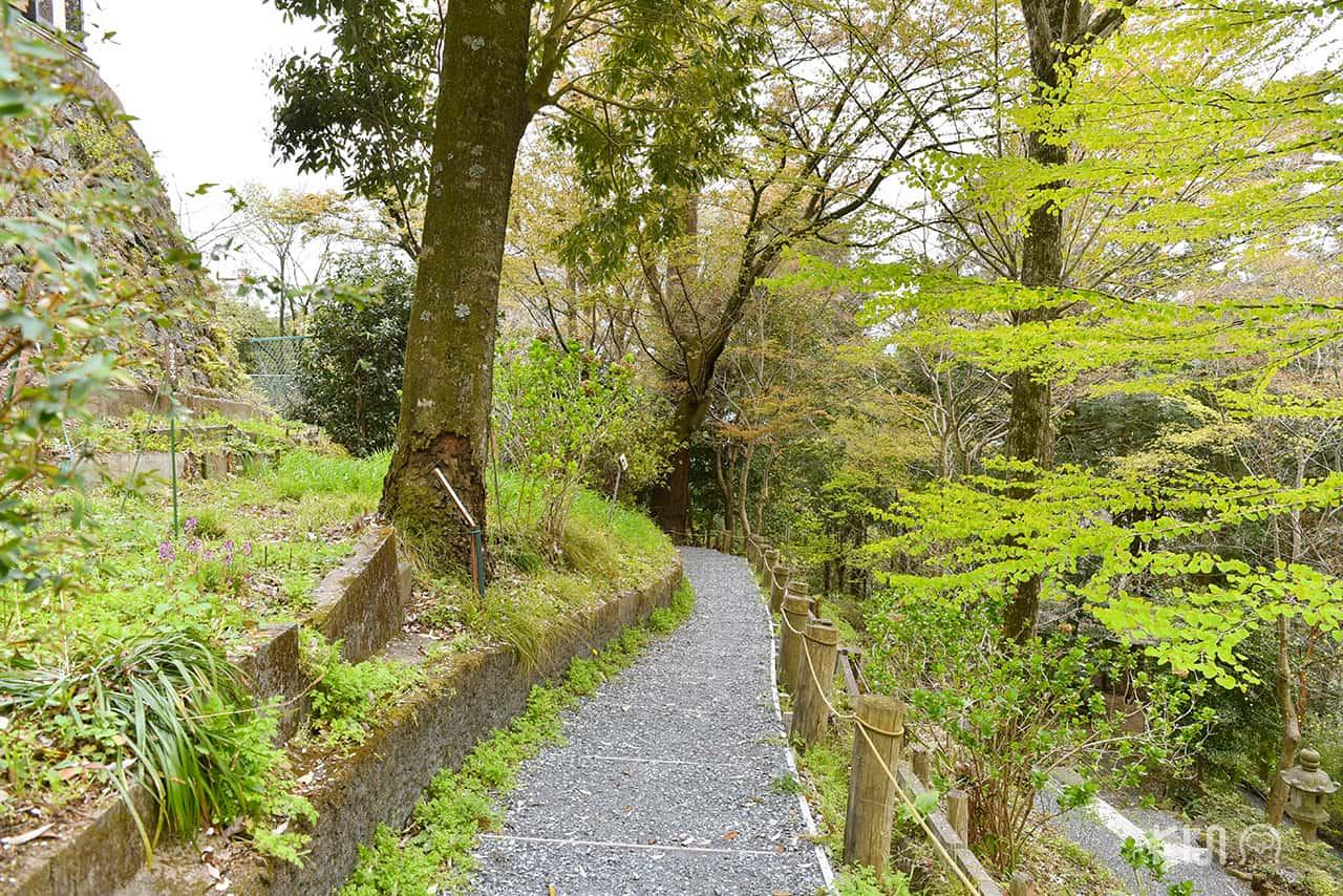 รีวิว ภูเขาทาคาโอะ (Mt.Takao)
