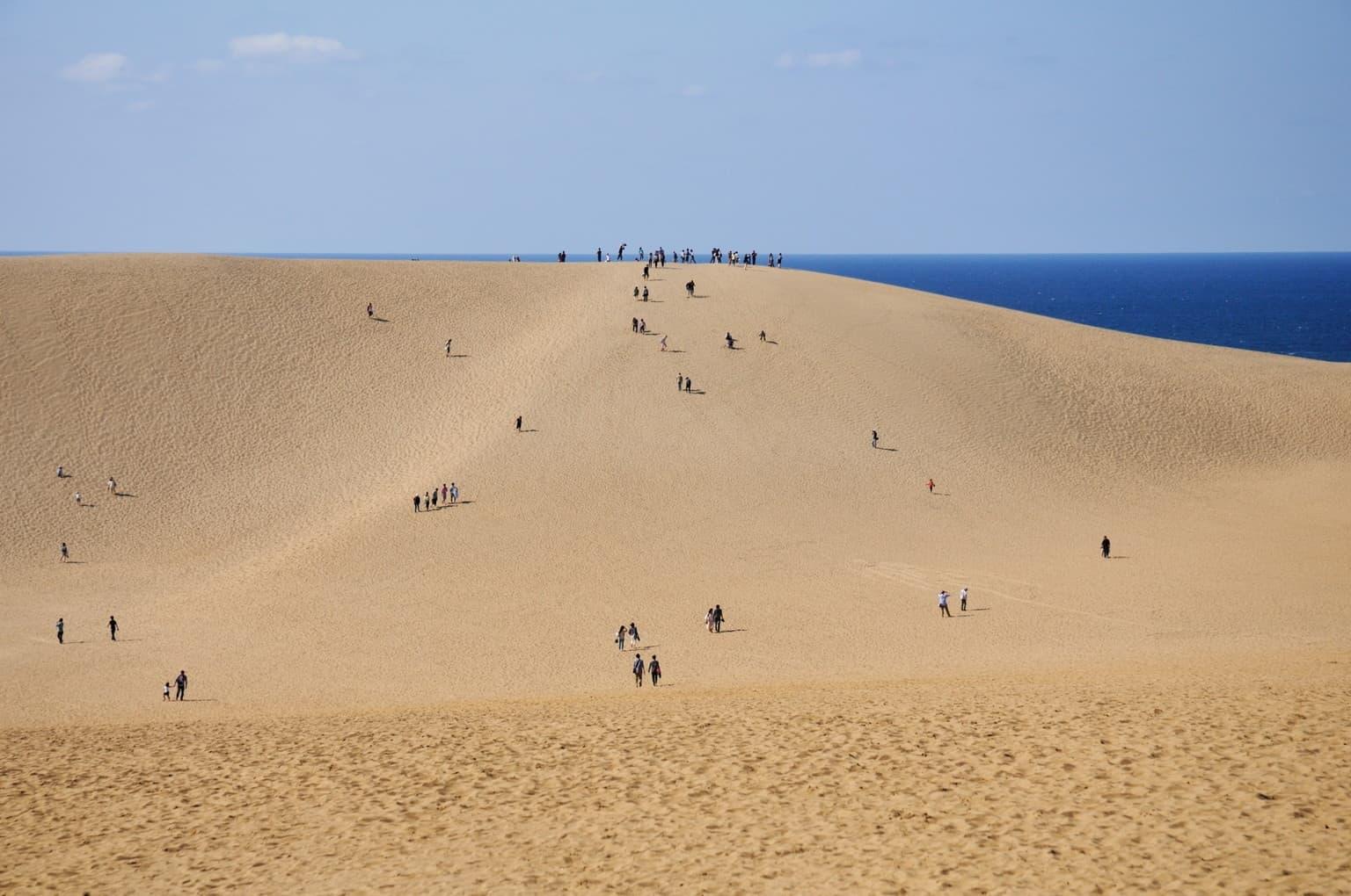 เที่ยวญี่ปุ่น คนน้อย unseen เนินทรายทตโตริ (Tottori Sand Dunes : 鳥取砂丘)