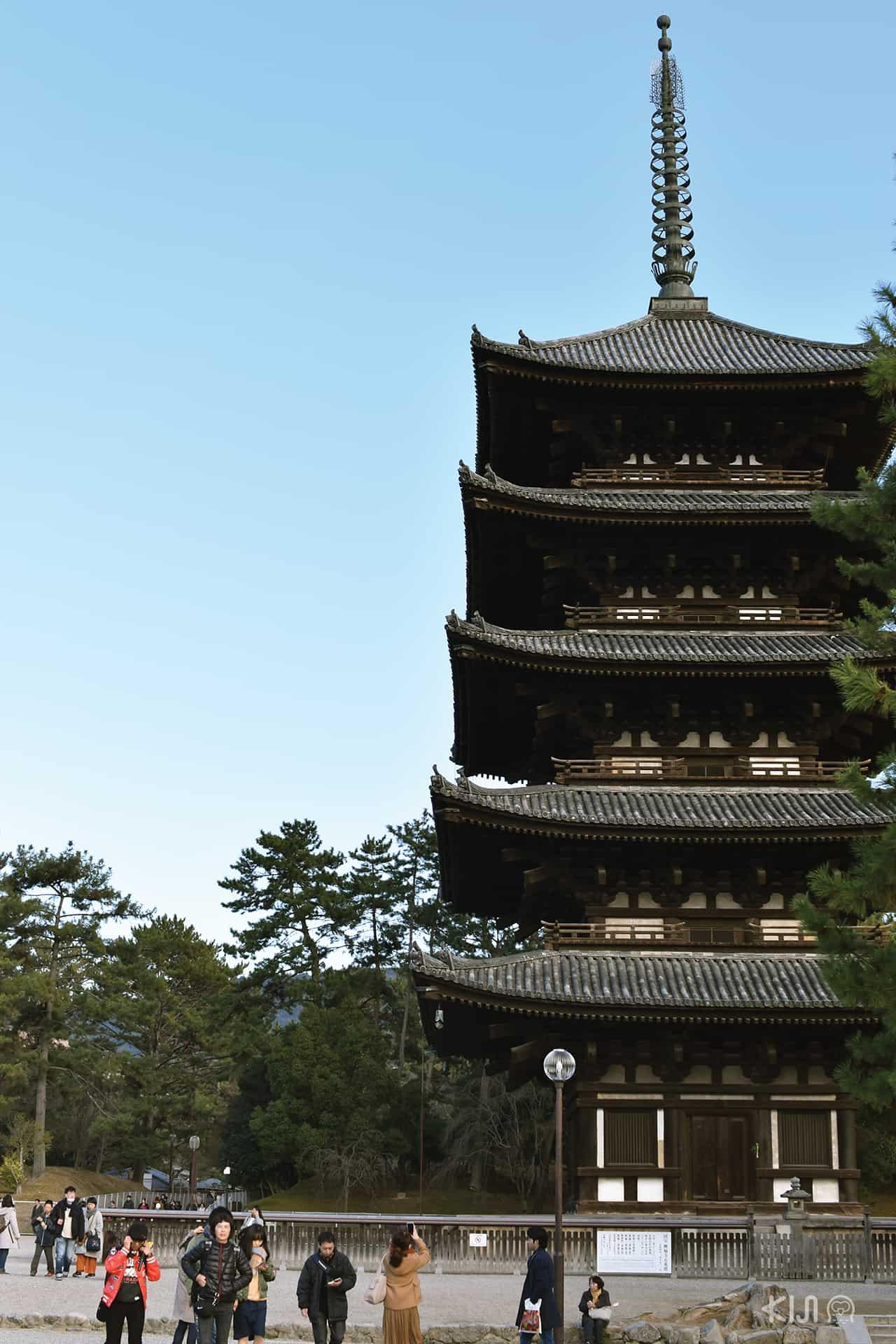 ที่เที่ยวนารา (Nara) : วัดโคฟุคุจิ