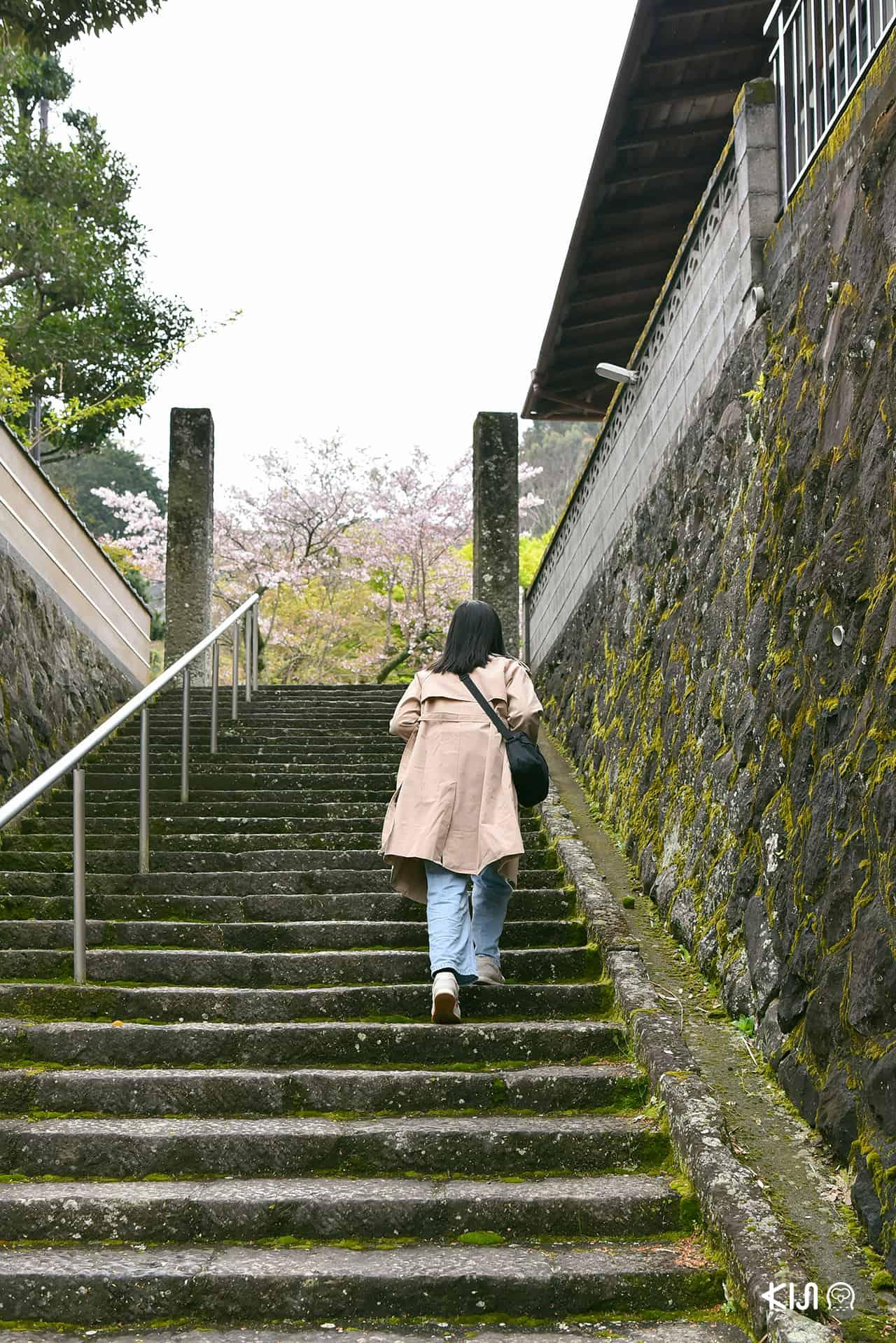 วัดฟุคุเซนจิ (Fukusenji Temple) จ.คานางาวะ (Kanagawa)
