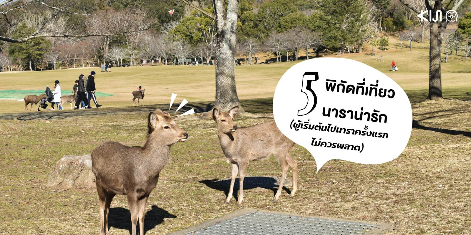 พิกัด ที่เที่ยวนารา (Nara) เที่ยวครั้งแรก