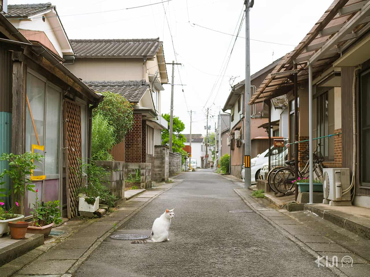 บ้านเรือนที่ บุงโกะทาคาดะ (Bungotakada) โออิตะ
