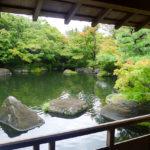 kokoen garden- himeji city-japan
