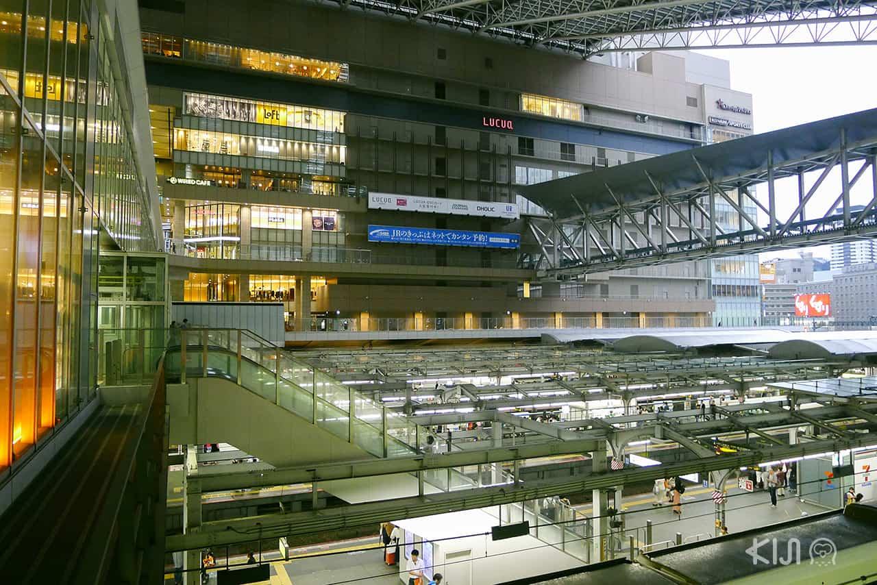 แหล่งท่องเที่ยว สถานีรถไฟในญี่ปุ่น - ห้าง LUCUA 1100 ในสถานีรถไฟโอซาก้า