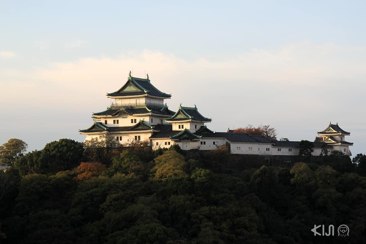 Wakayama Castle เที่ยว เมืองรอง ญี่ปุ่น