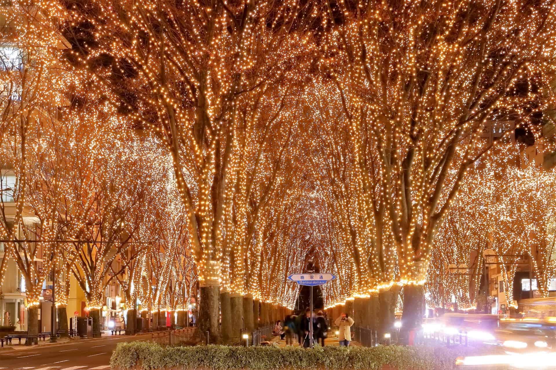 ชมไฟประดับ ใน ฤดูหนาว ที่ภูมิภาค โทโฮคุ SENDAI Pageant of Starlight