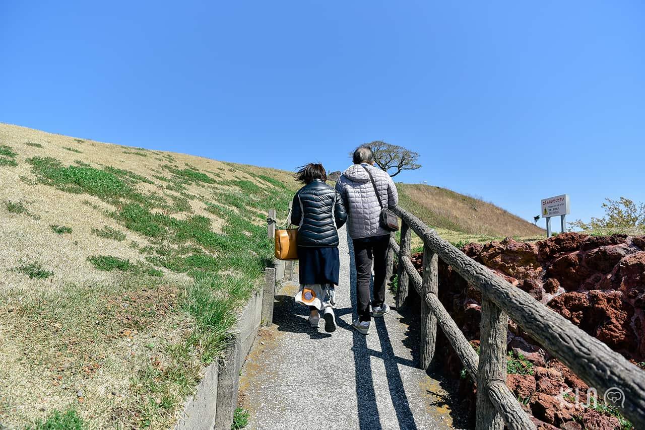 ภูเขาโอมูโระ (Mt.Omuroyama) สถานที่พักผ่อนของชาวเมืองชิซูโอกะ