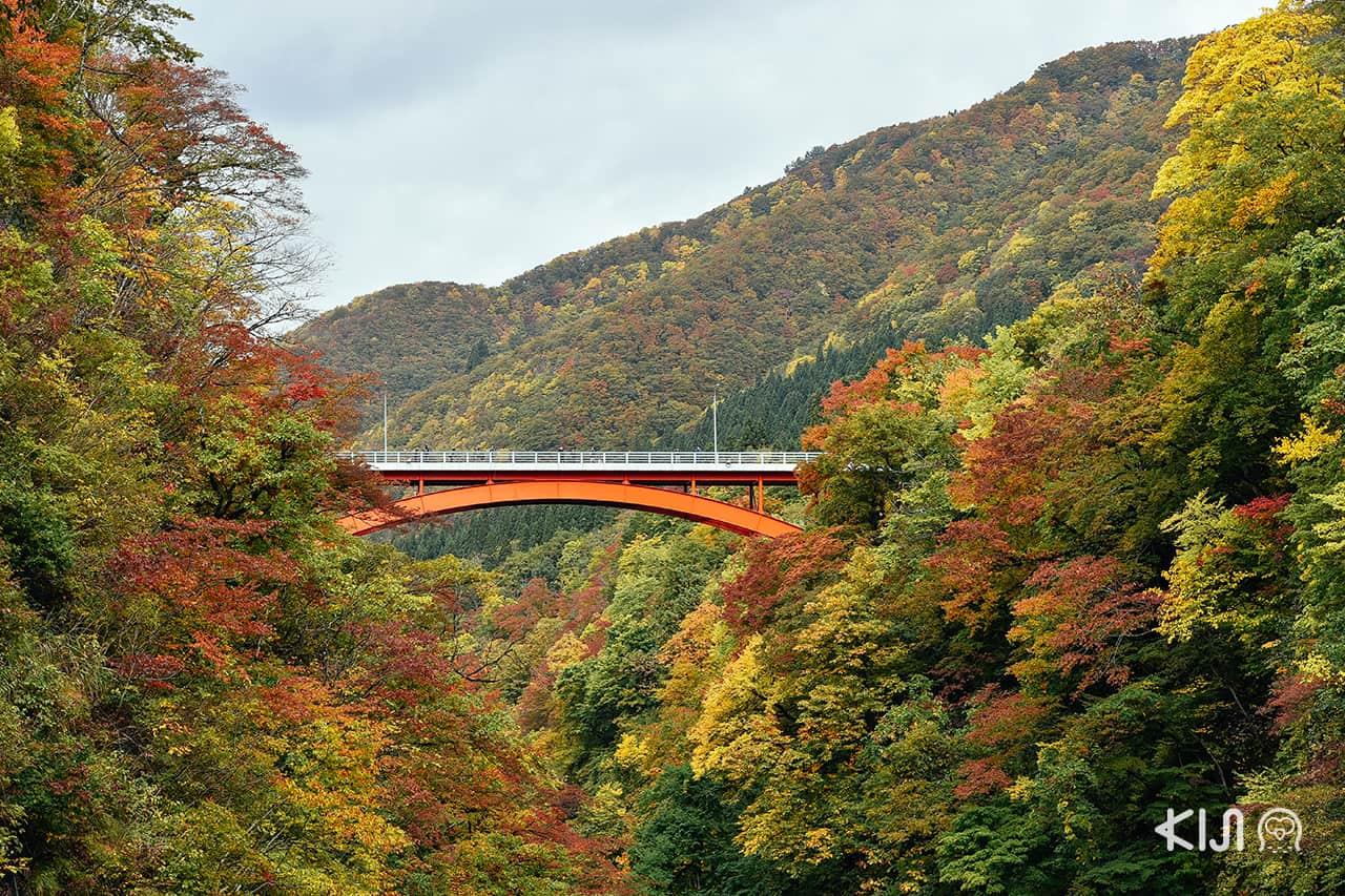 เที่ยว อาคิตะ (Akita) ที่ เมืองยุซาวะ (Yuzawa)