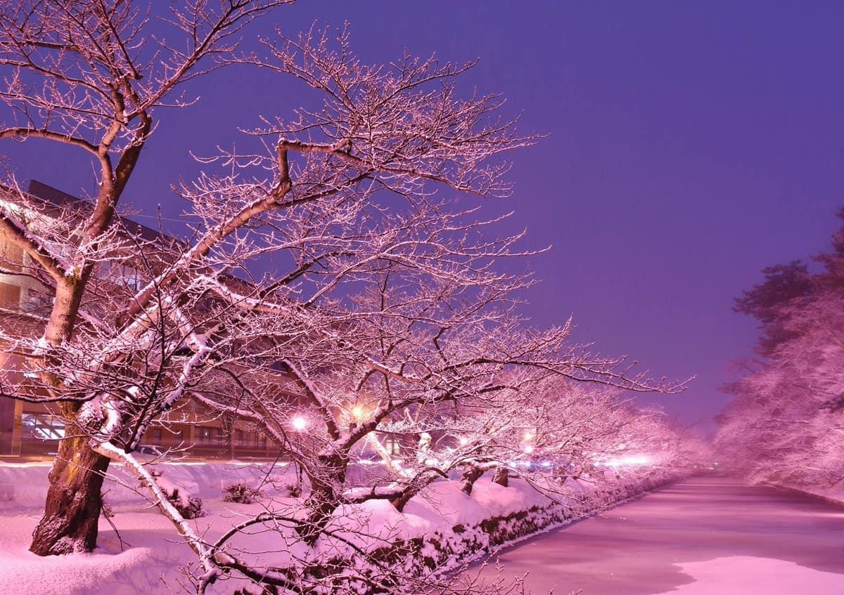 ฤดูหนาว ที่ โทโฮคุ