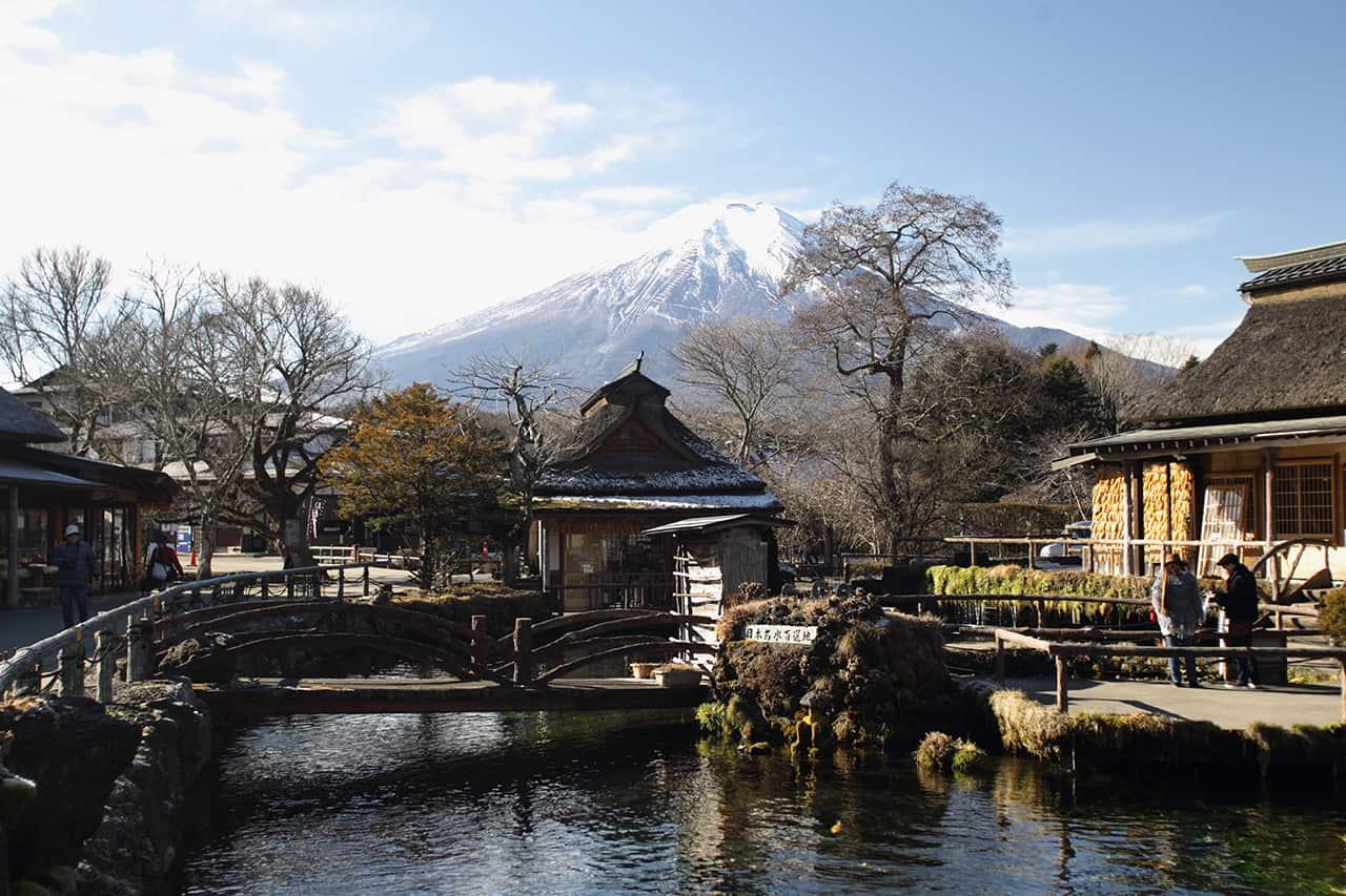 Fuji Hakone Pass เที่ยว หมู่บ้านน้ำใส (Oshino Hakkai)