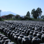 kagoshima aging vinegar_1234095013
