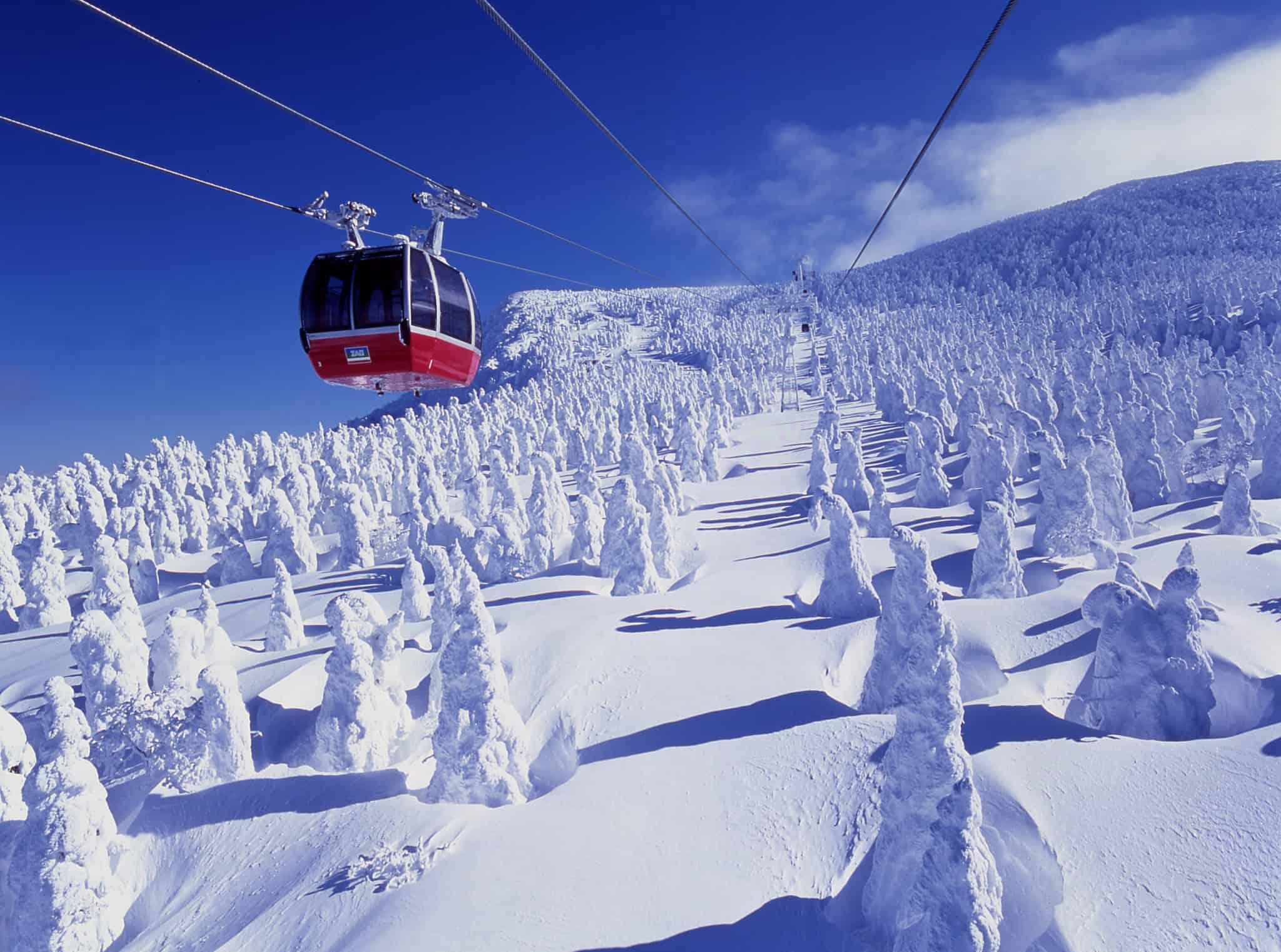 ภูเขาซาโอะ (Mt. Zao) โทโฮคุ ฤดูหนาว