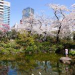 scenic pocket park-roppongi hills-tokyo-japan