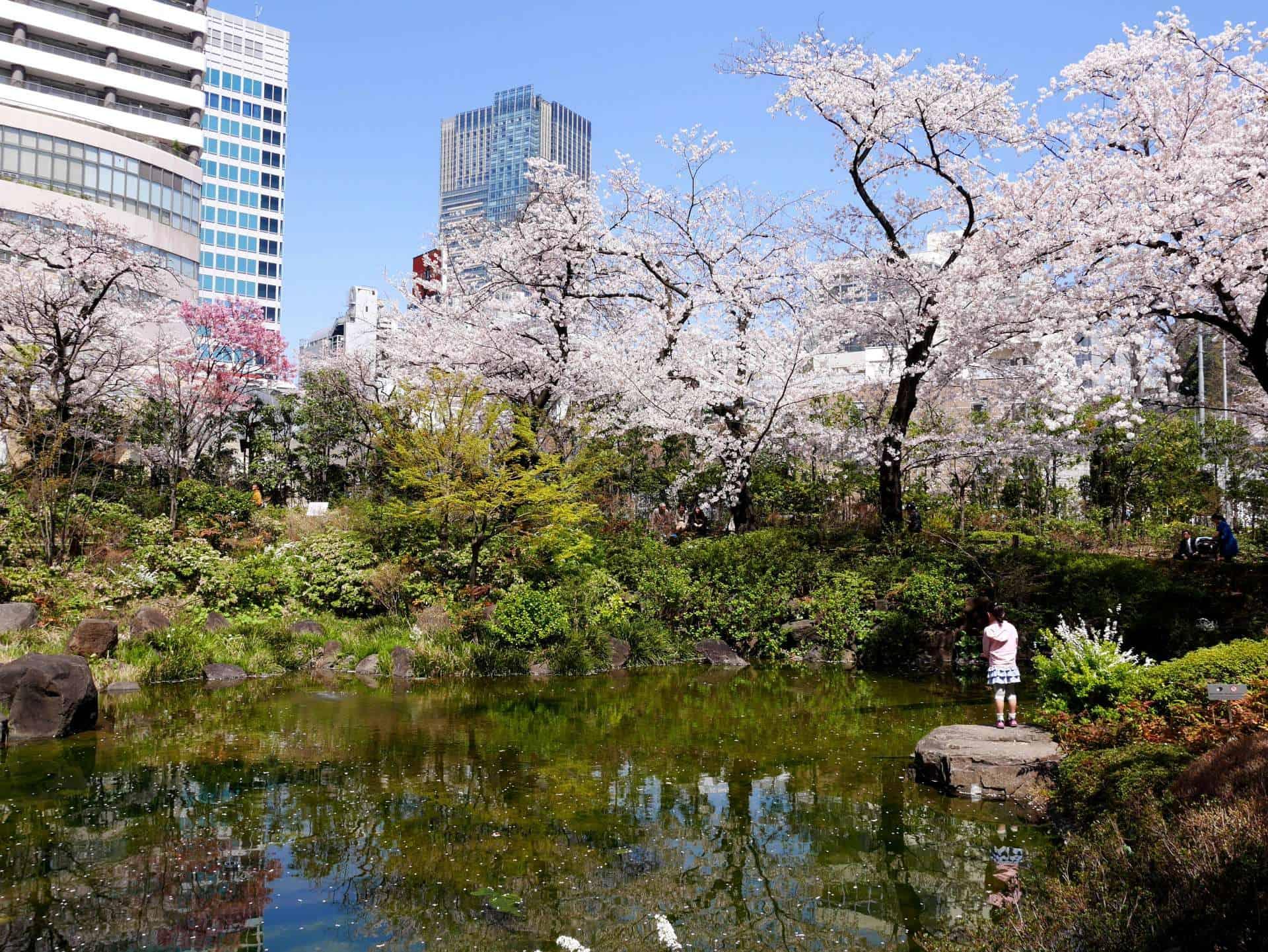 สวนสาธารณะ (Pocket Park) โตเกียว