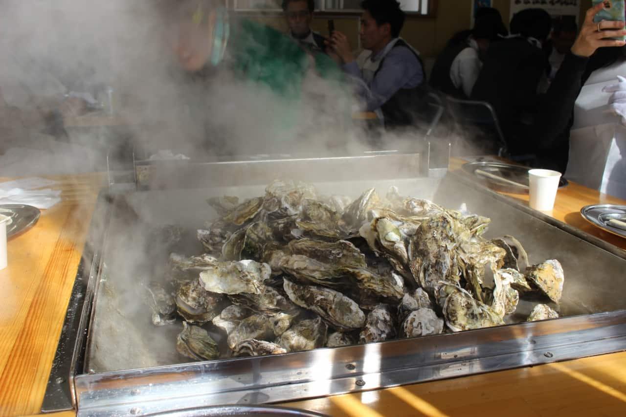 กินหอยนางรม ช่วง ฤดูหนาว ที่ภูมิภาค โทโฮคุ