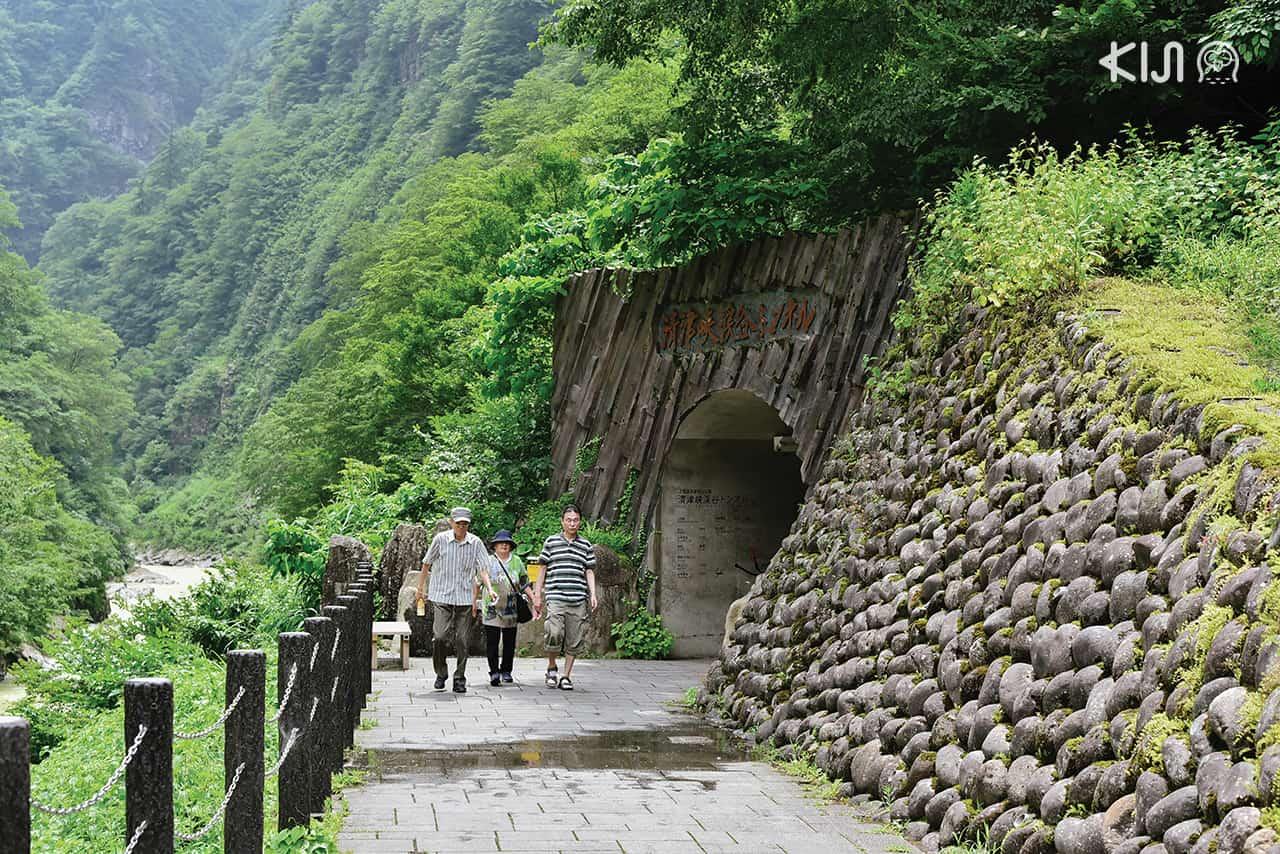 เที่ยว นีงาตะ Echigo-Tsumari Art Field