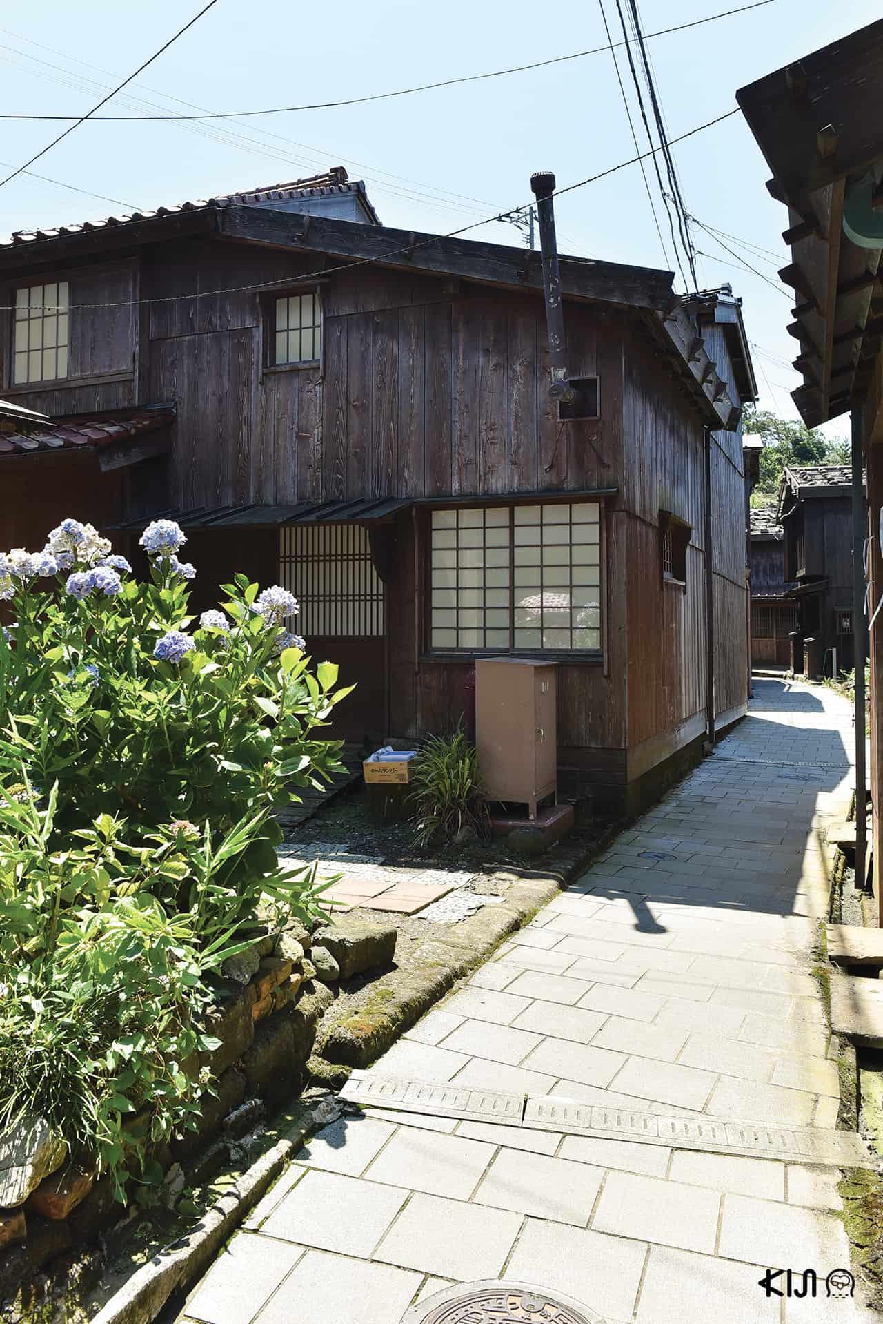 ที่เที่ยว Niigata - Shukunegi Village