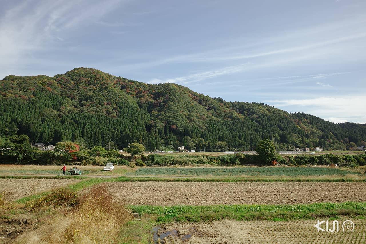 เที่ยวอาคิตะ (Akita) ด้วยรถไฟ อาคิตะไนริคุ (Akita Nairiku Line)