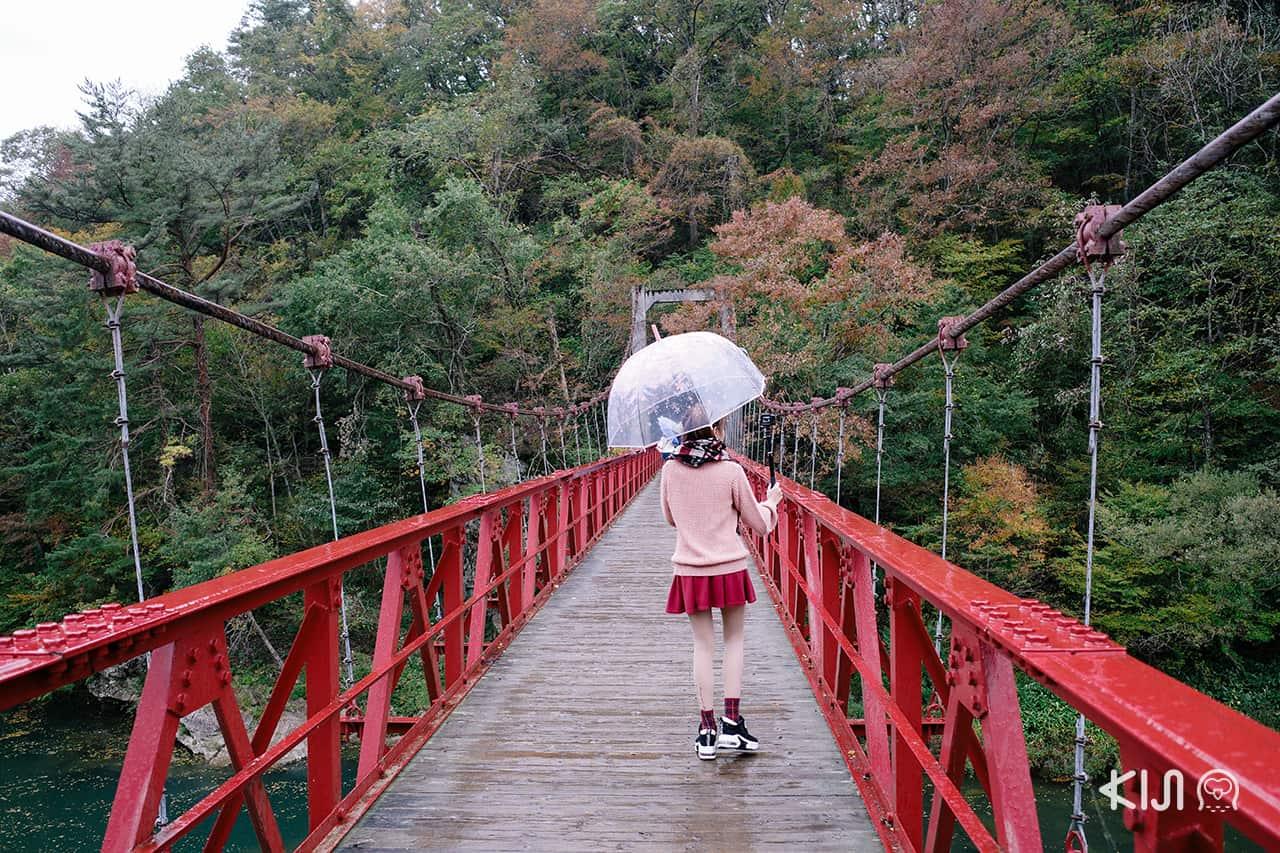 หุบเขาดาคิกาเอริ (Dakigaeri Gorge) อาคิตะ
