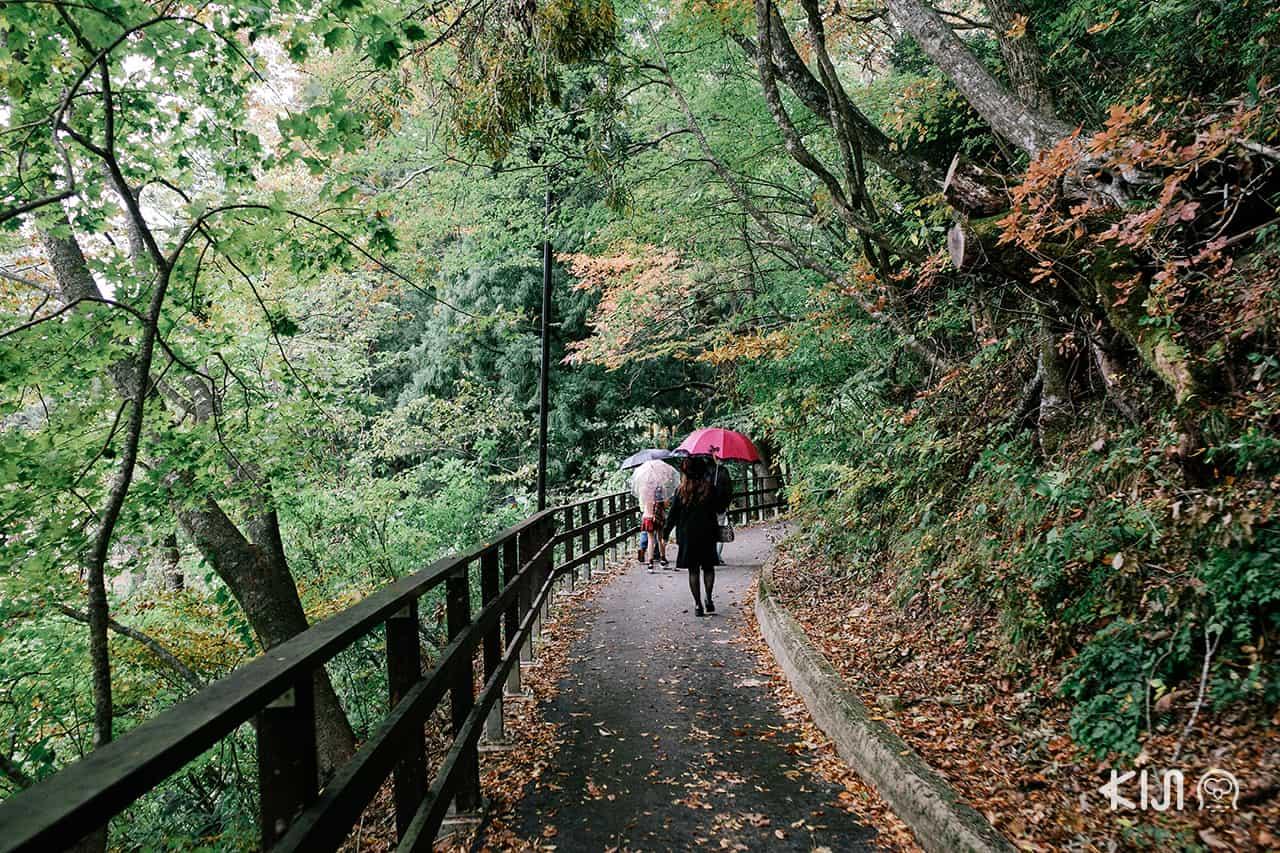 หุบเขาดาคิกาเอริ Dakigaeri Gorge