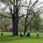 botanic garden hokkaido university-green space-sapporo-hokkaido-japan