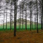 moerenuma park-mount moere2-sapporo-hokkaido-japan