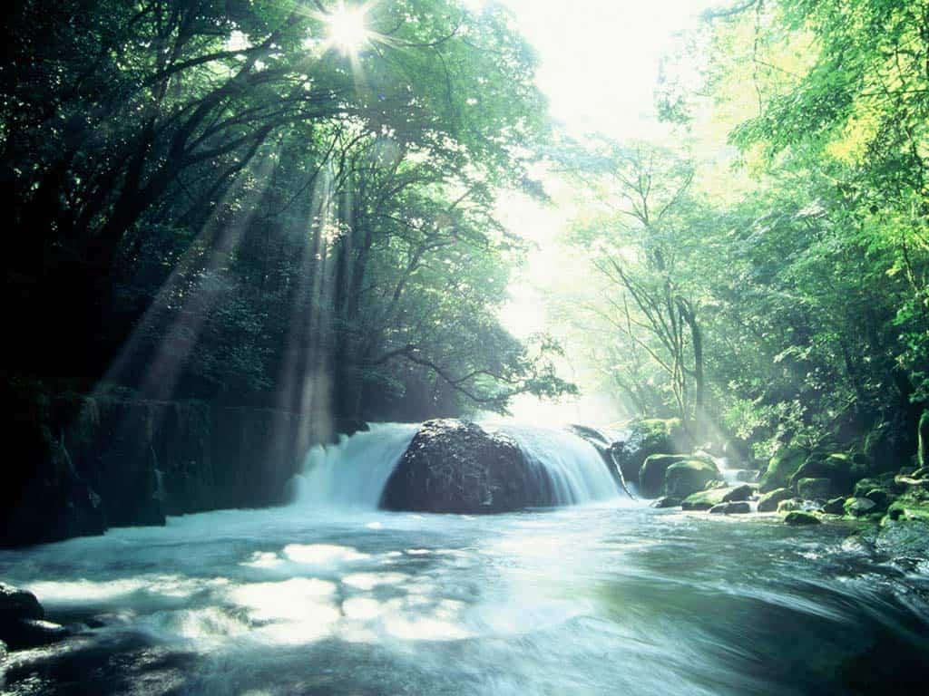 เที่ยว โออิตะ (Oita) - หุบเขาคิคุจิ (Kikuchi Gorge)