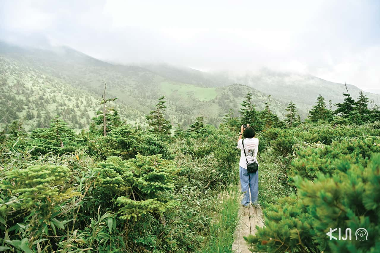 Mt.Hakkoda จ.อาโอโมริ (Aomori)