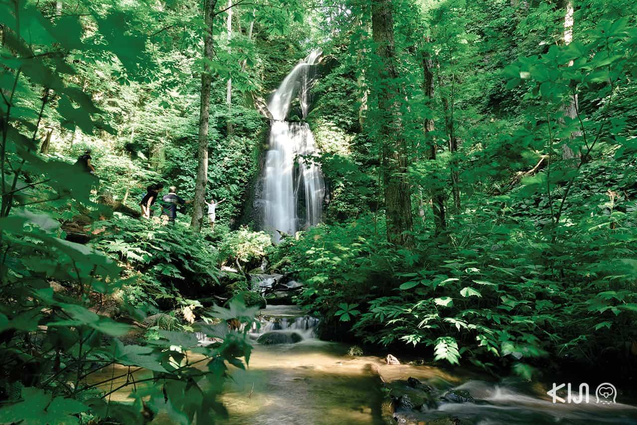 Kumoinotaki Falls อาโอโมริ (Aomori)