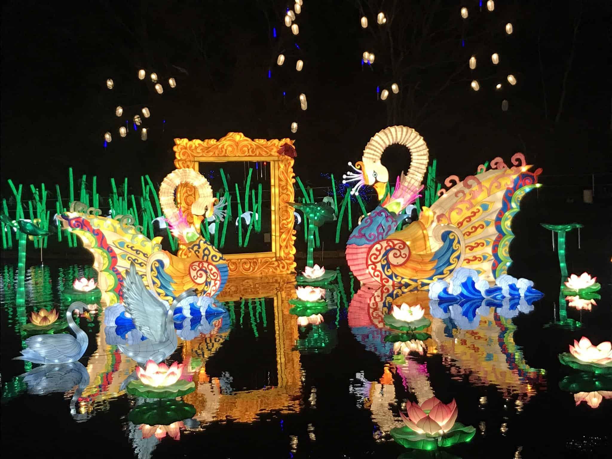 เทศกาลโคมจีน (China Lantern Festival) ชิบะ