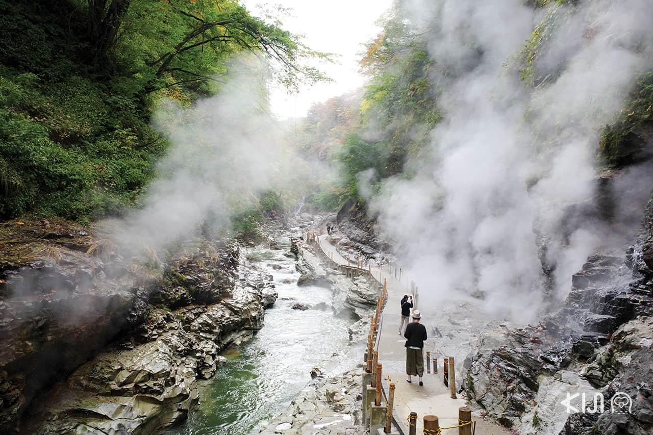 เที่ยว โอยาสุเคียว (Oyasukyo) หรือ หุบเขาโอยาสุ (Oyasu Valley)