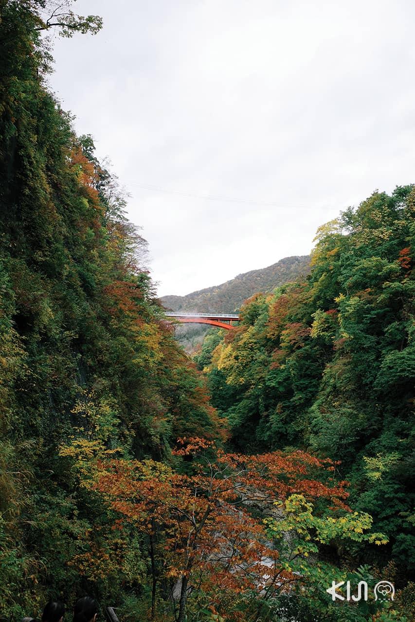 หุบเขาโอยาสุ (Oyasu Valley) โอยาสุเคียว - Kawarayu Bridge
