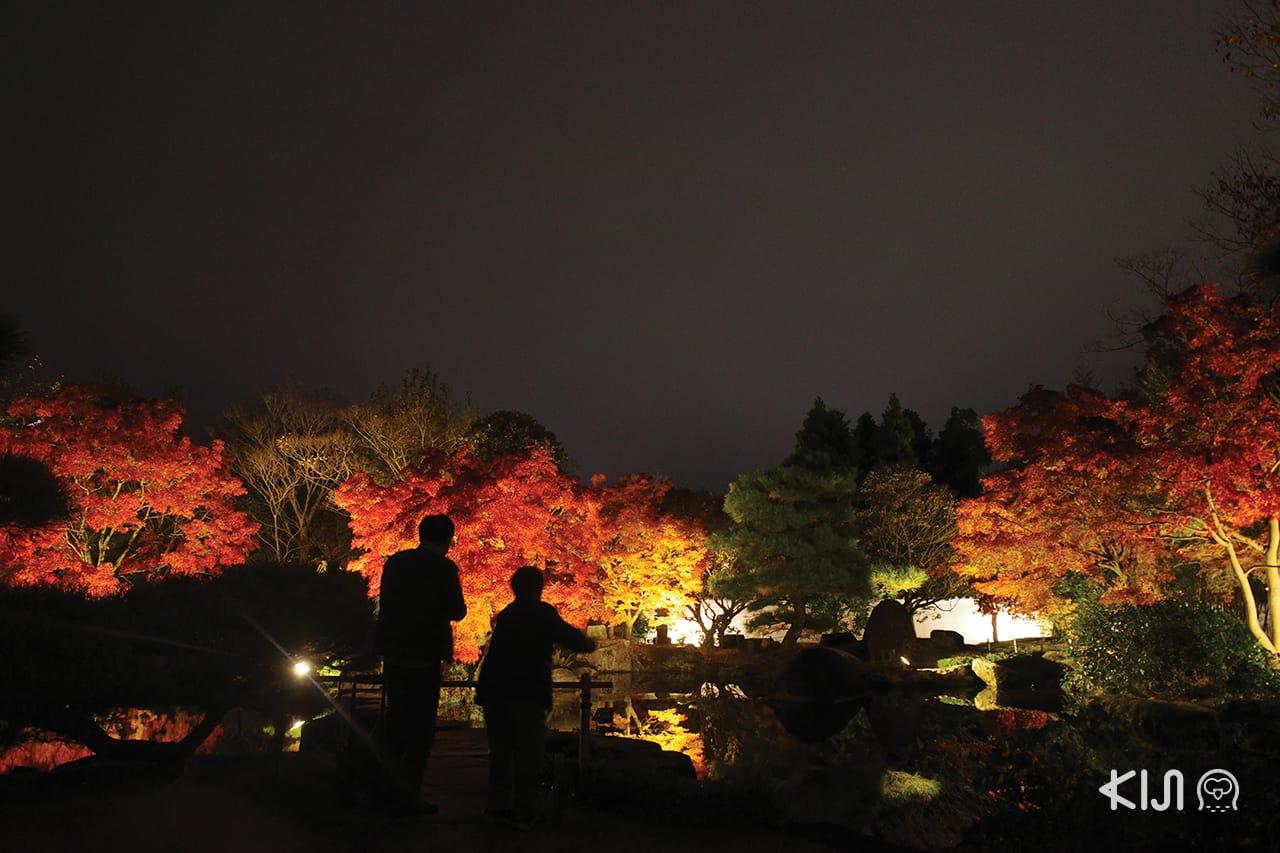 เที่ยว โกเบ(Kobe) ฮิเมจิ (Himeji) โอตสึ (Otsu) : KOKO-EN Garden