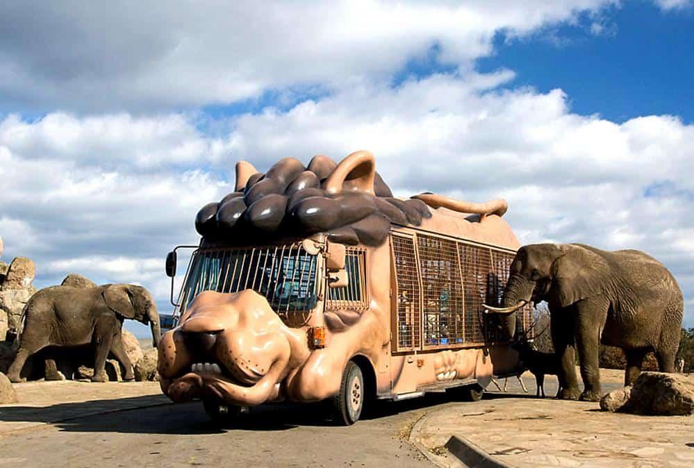 โออิตะ (Oita) - สวนสัตว์แอฟริกันซาฟารี