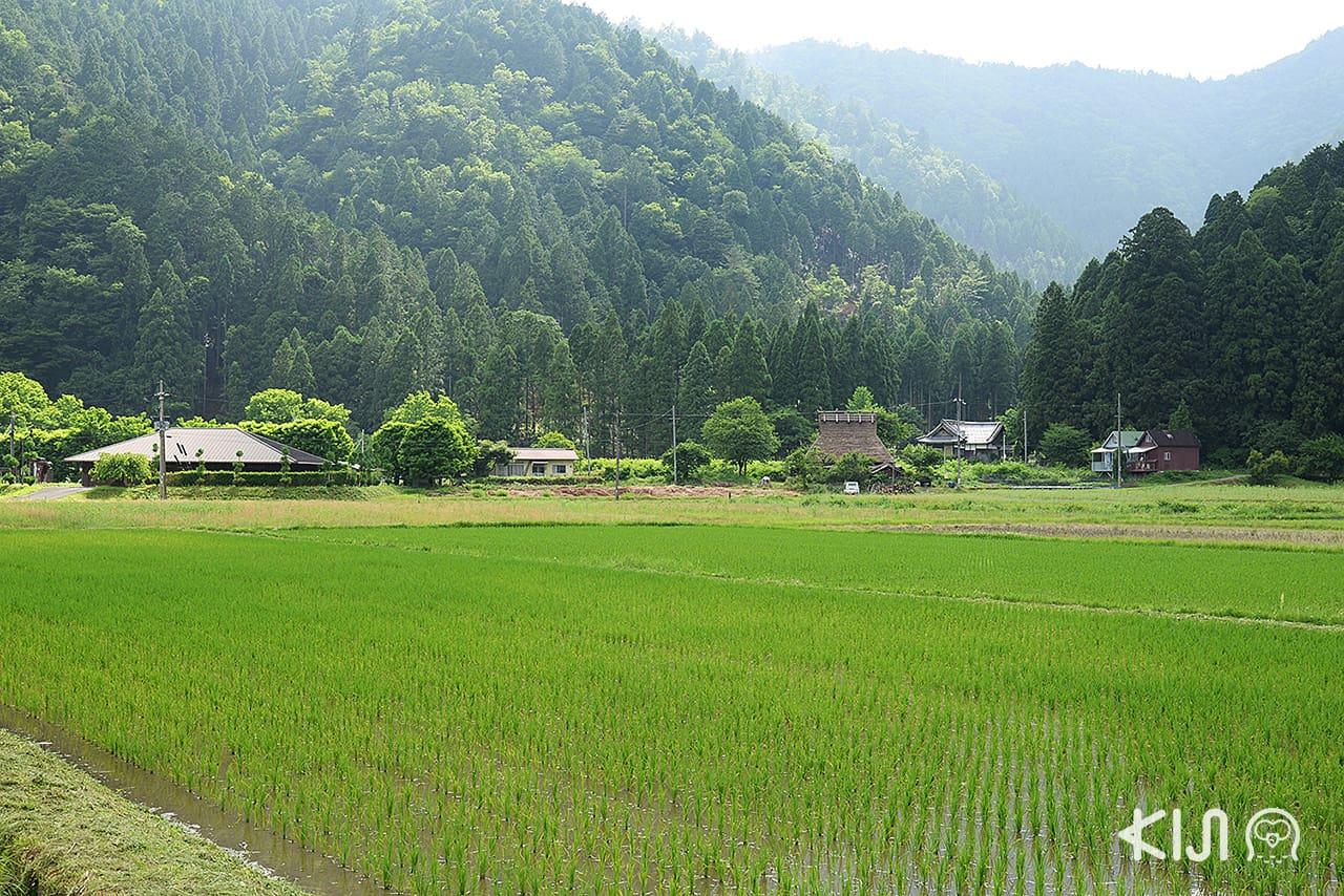 เมืองชนบทมิยามะ (Miyama) มีพิพิธภัณฑ์ Miyama Folklore Museum