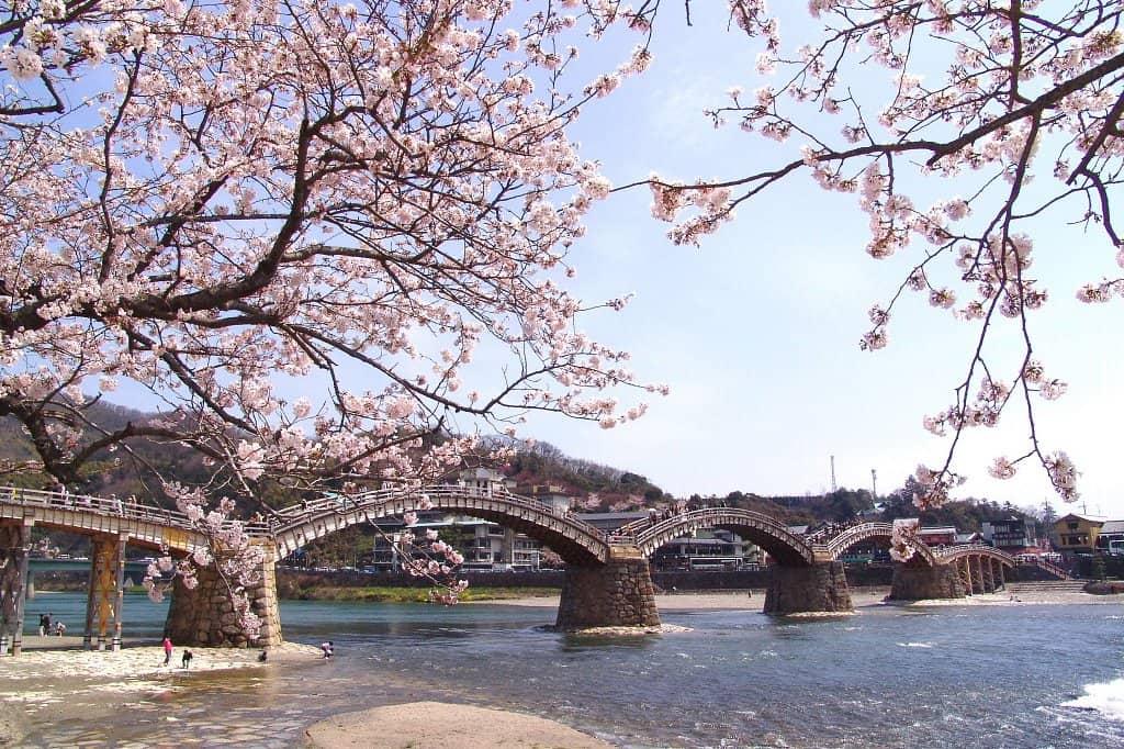 จุดถ่ายรูป ยามากุจิ (Yamaguchi) - สะพานคินไต (Kintai Bridge)