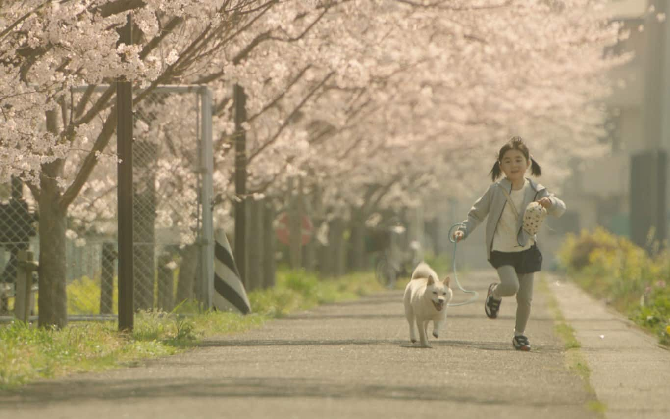 """Show Me The Way To The Station """"ชิเสะ นิอิสึ"""" ลูกสาวของมาโคโตะ ชินไค"""