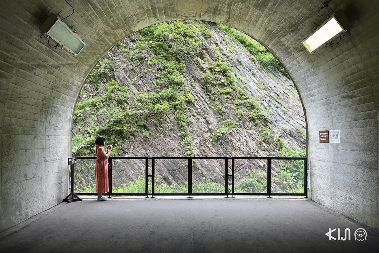 Echigo-Tsumari Art Field - Tunnel of Light แพลตฟอร์ม 1