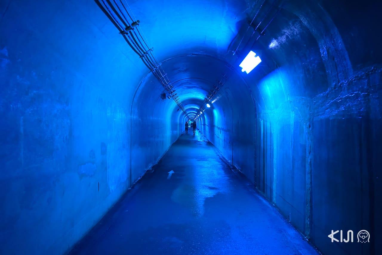 Echigo-Tsumari Art Field - ภายใน Tunnel of Light