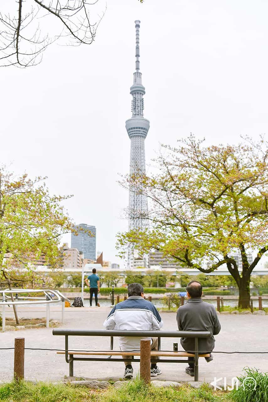 โตเกียวสกายทรี (Tokyo Sky Tree)