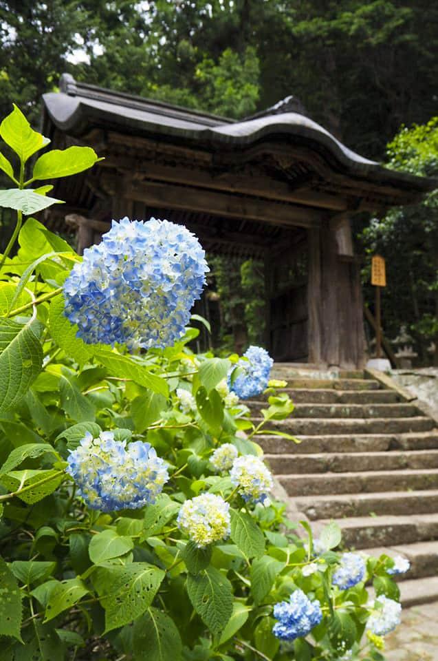 วัดเก็ชโชจิ (Gesshoji Temple) อีกแหล่งท่องเที่ยวสำคัญในชิมาเนะ Shimane